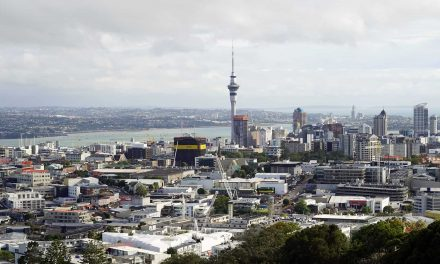 Why So Many UK Construction And Trade Workers Are Building A New Life In New Zealand