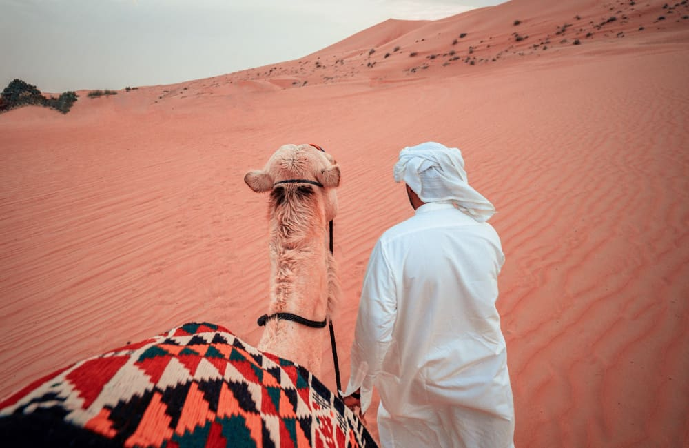 camel rides United Arab Emirates desert