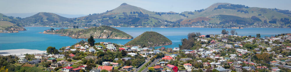 dunedin property south island