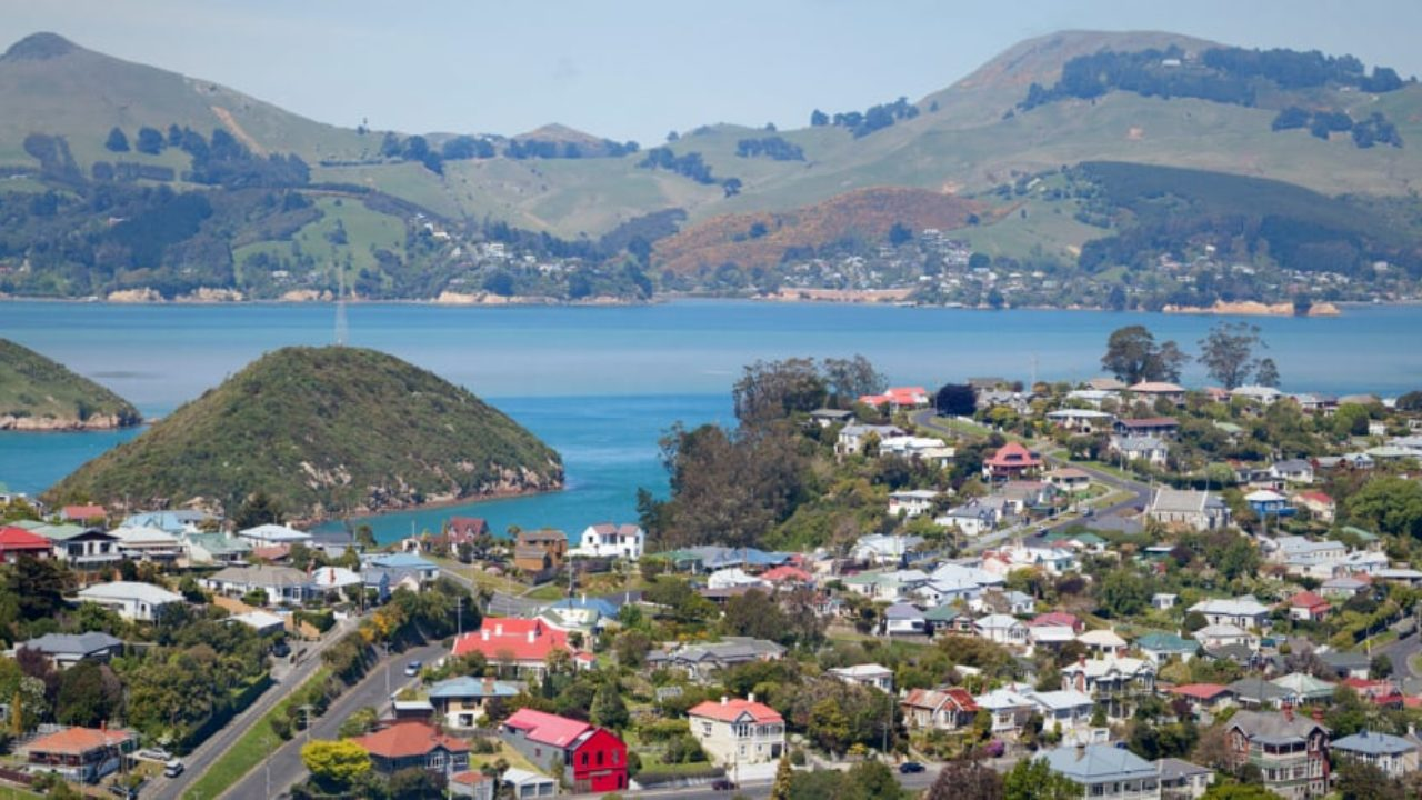 What House Can You Afford To Buy In New Zealand Pss Removals