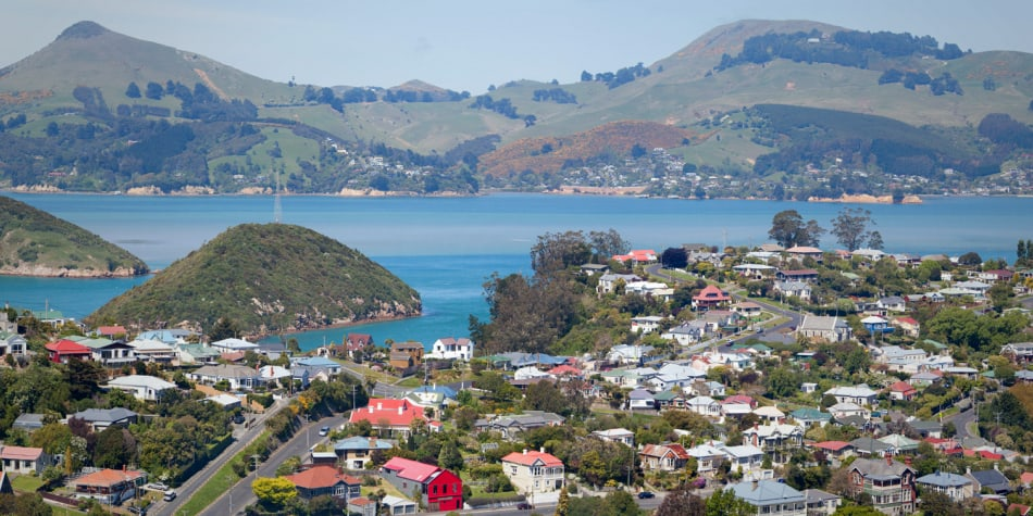 What house can you afford to buy in New Zealand?