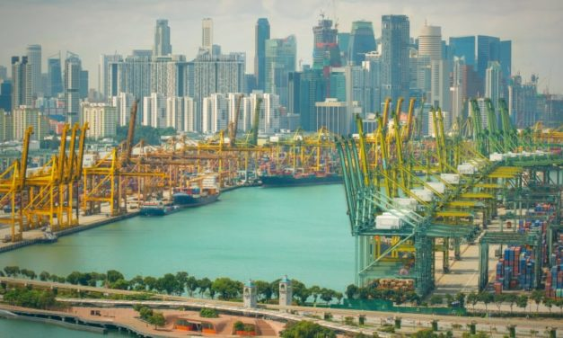 How much does shipping to Singapore cost in 2020?
