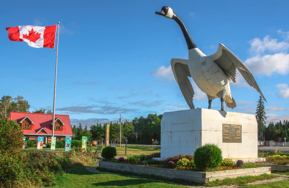 Canada Goose Wawa Ontario
