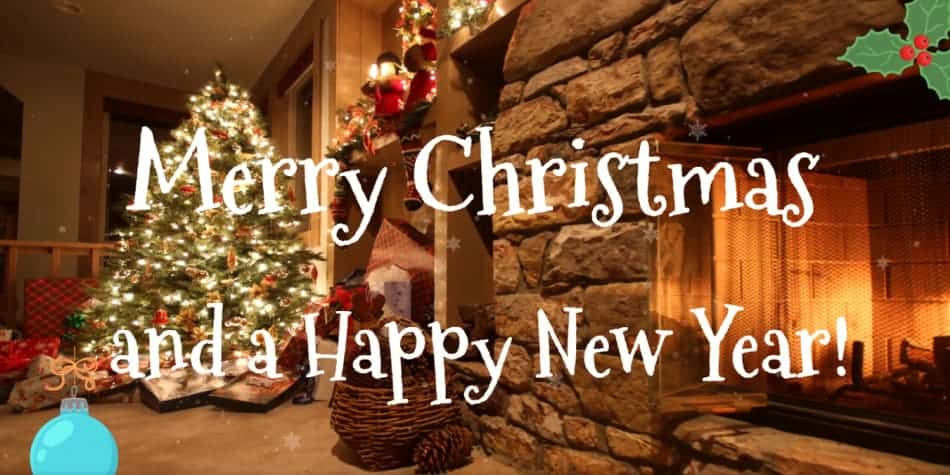 Merry Christmas and a Happy New Year from PSS!